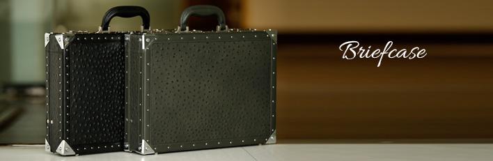 Buy Briefcase Online India