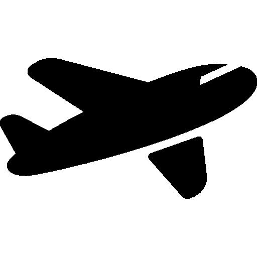 Fast Shipping through Air