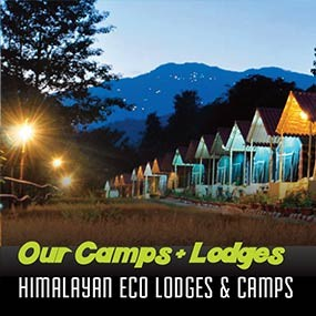 Himalayan Eco Lodges & Camps