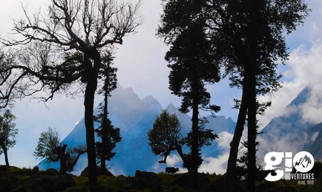 Swargarohini Peaks