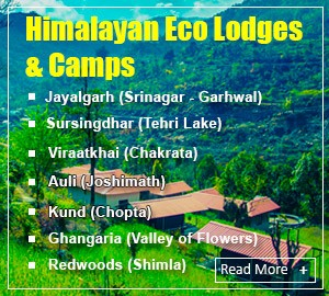 Himalayan Eco Lodge