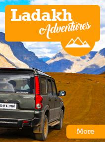 Ladakh Adventures