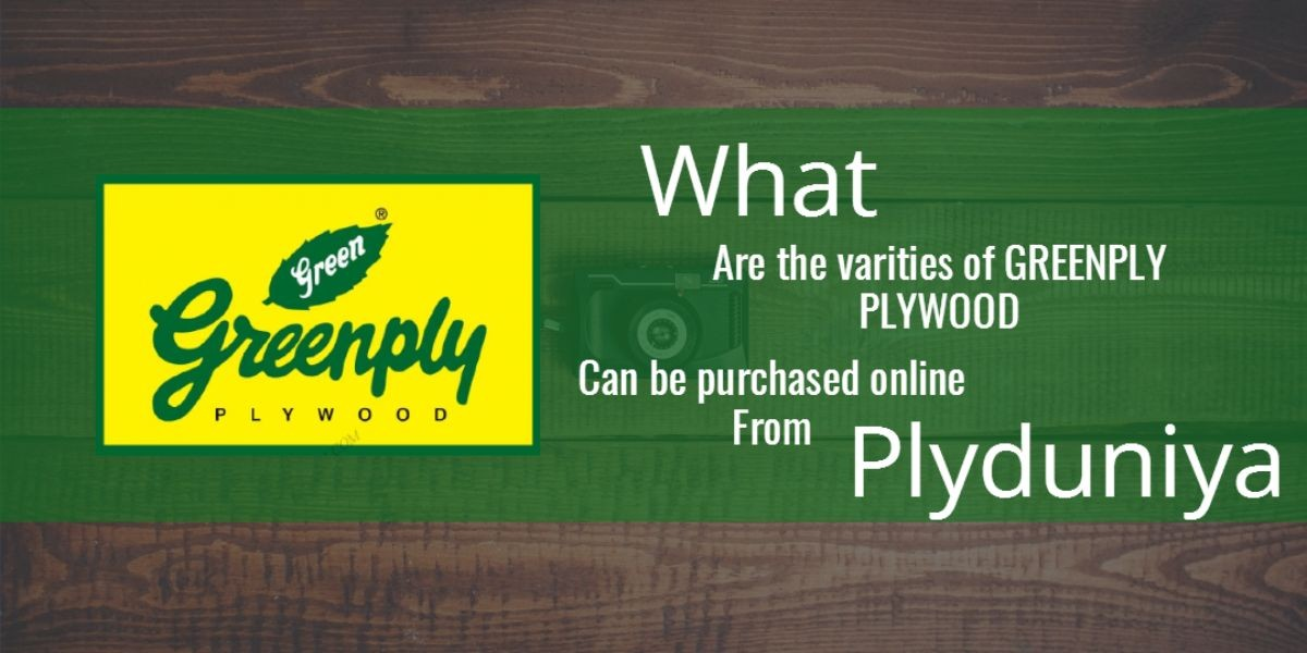 What are the varieties of Greenply Plywood can be purchased